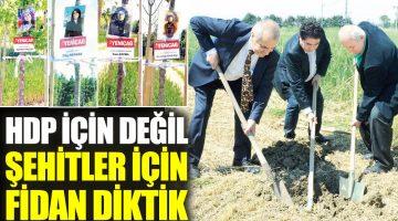 HDP için değil şehitler için fidan diktik